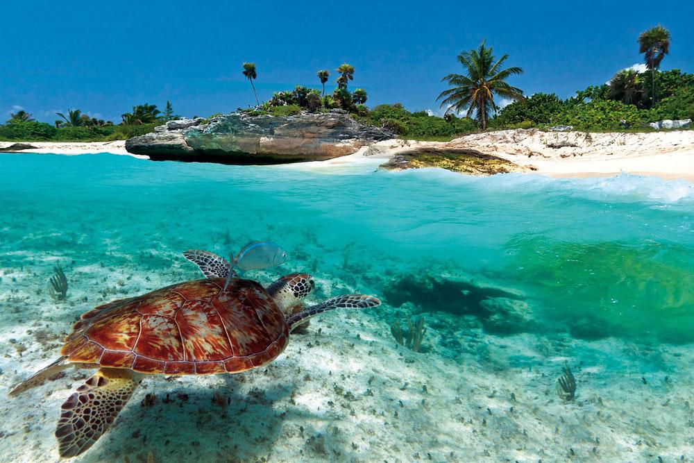 Отдых на Карибах