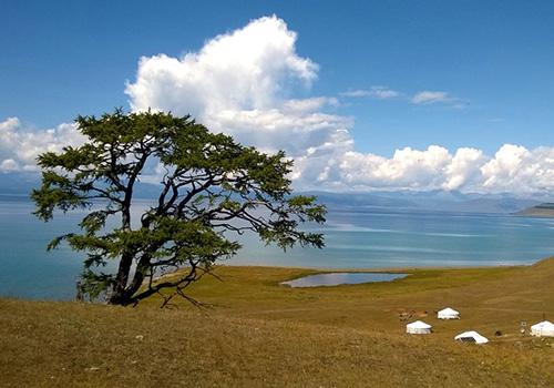 Вид природы Монголии