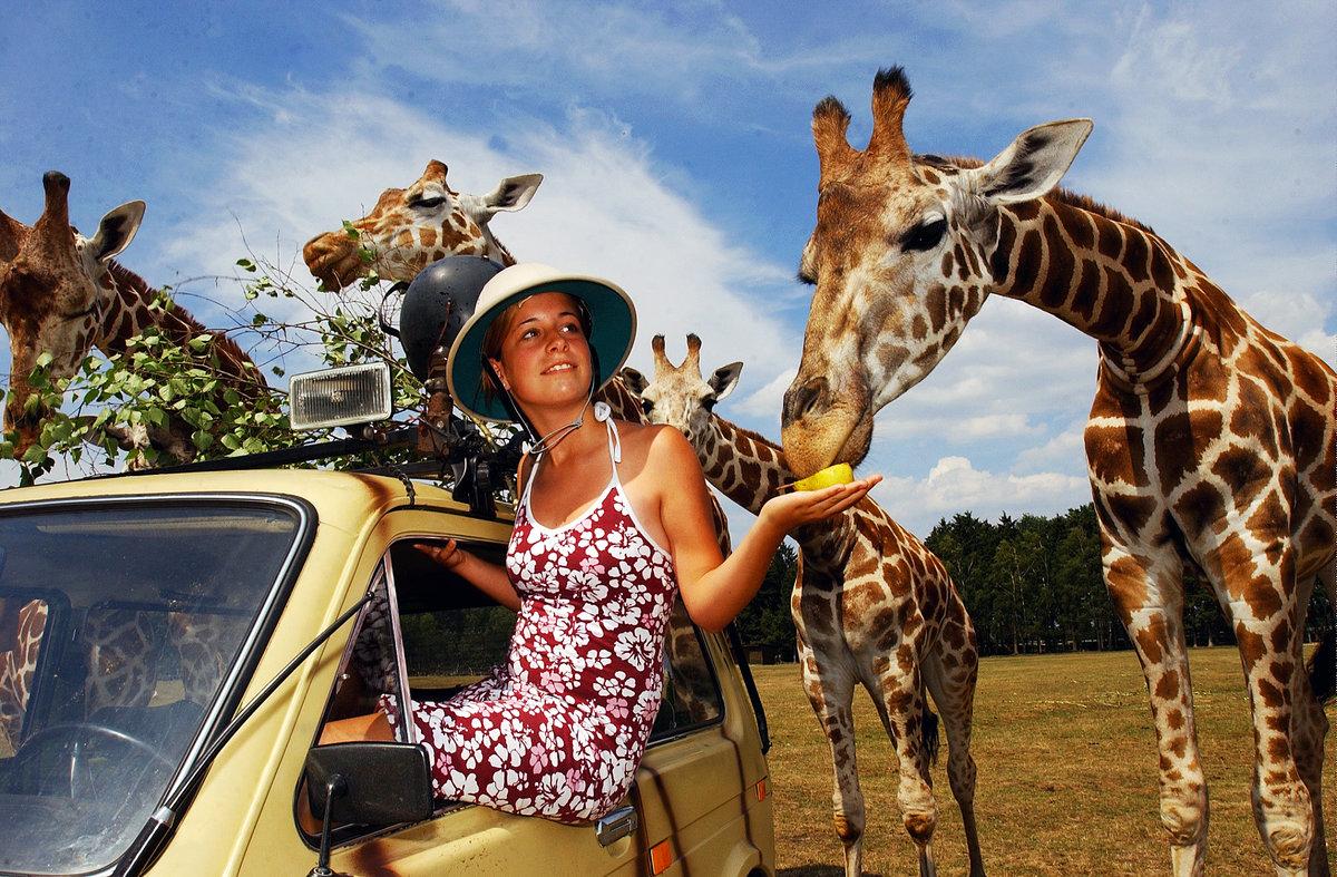 Туристическая виза в ЮАР