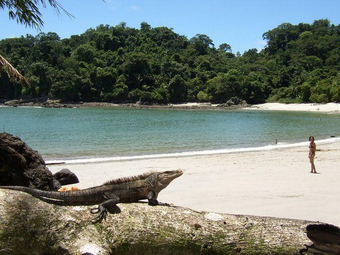 Что запрещено вывозить из Коста-Рики