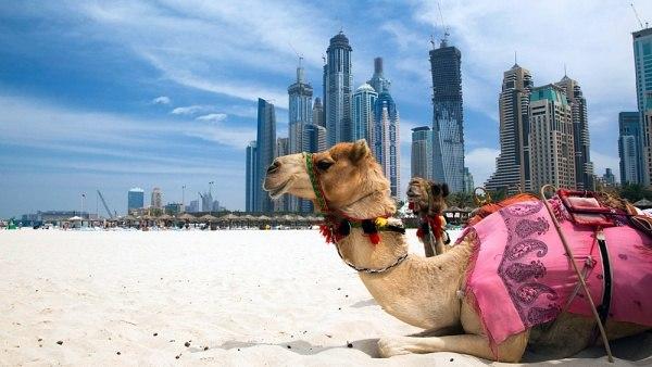 Туристическая виза в Оман