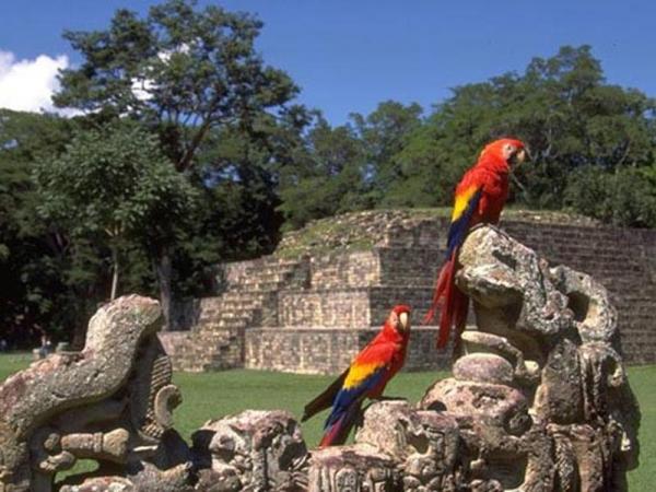 Что можно посмотреть в Гондурасе