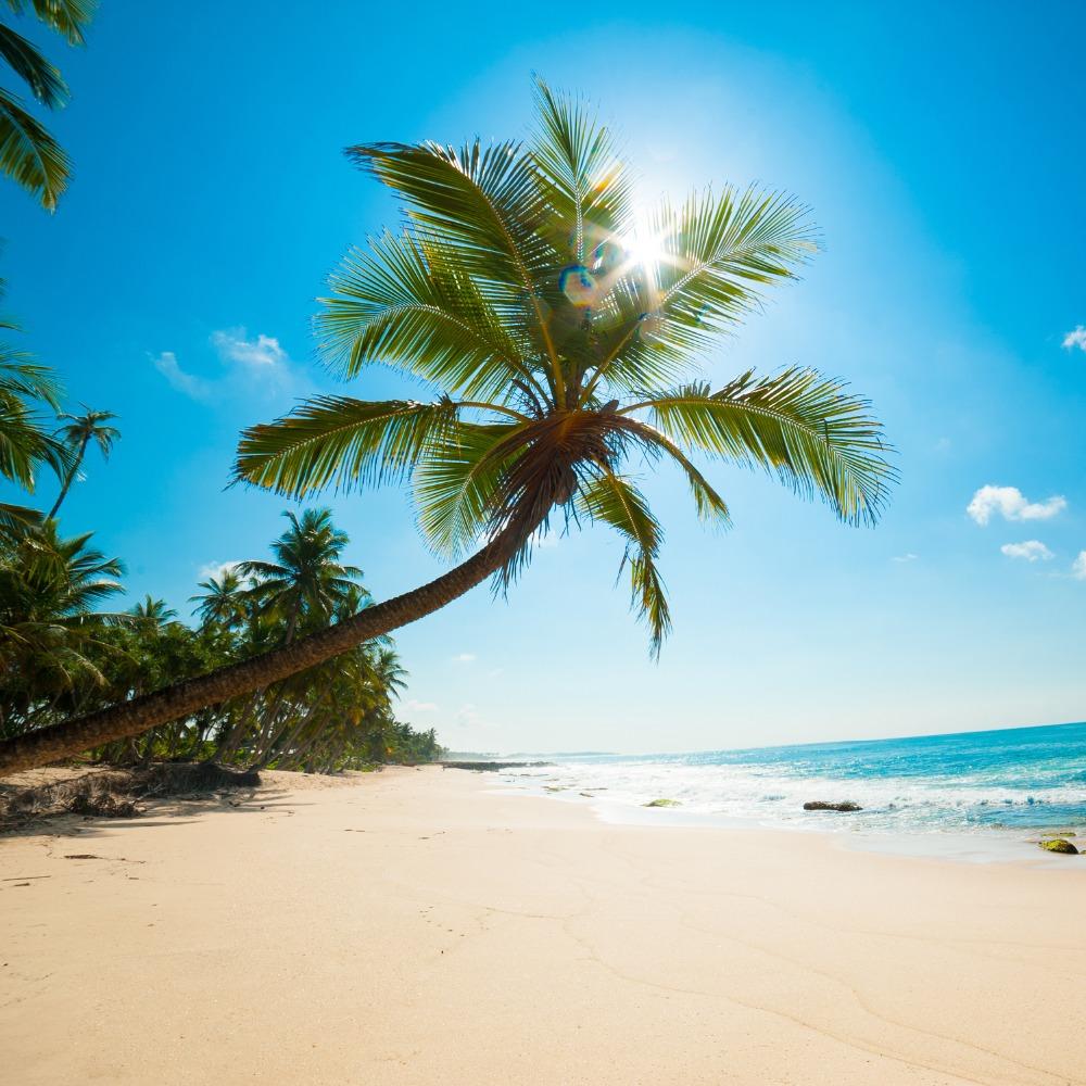 Путешествие на Карибы