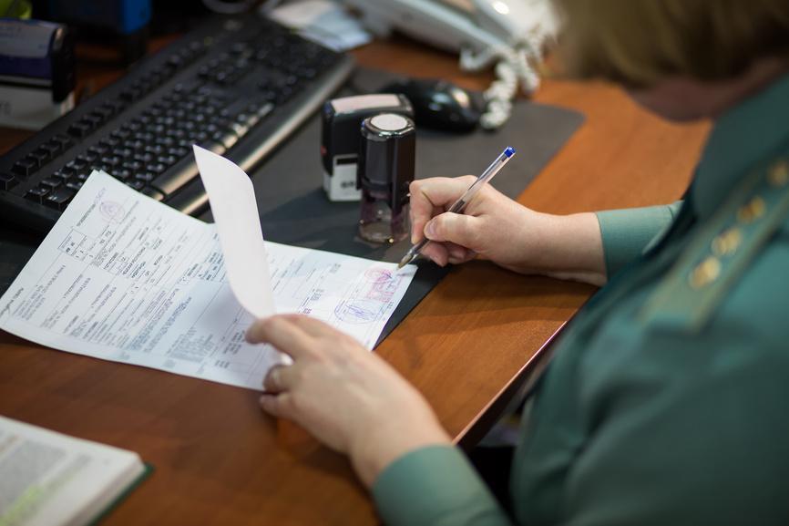 Подача документов на таможне В Лаосе