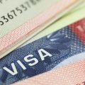 Где указан номер визы США