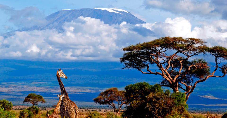 Страна Танзания
