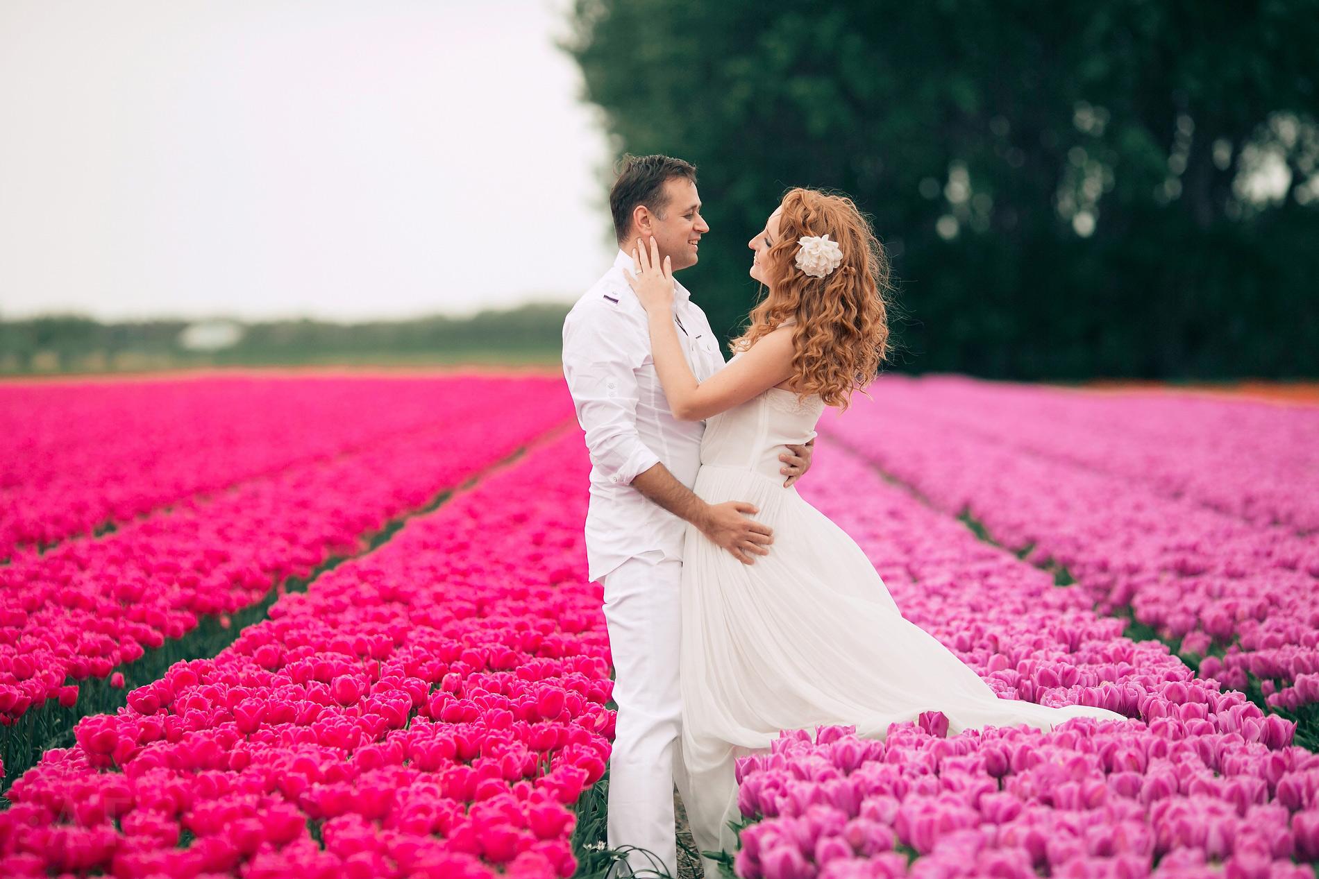 Свадьба в Голландии - способ получения ВНЖ