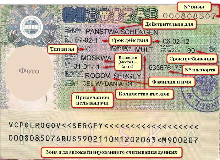 Какая информация отображается на шенгенской визе