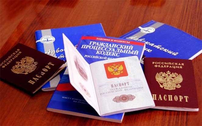 Как относятся в России к двойному гражданству