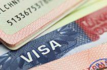 Американская виза: как она выглядит и где указан ее номер?