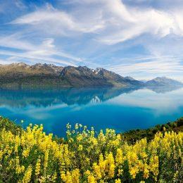 Получение визы в Новую Зеландию для россиян