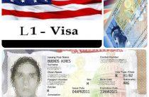 Какая нужна виза чтобы вести бизнес в Штатах?