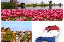 Какая виза нужна в Нидерланды?