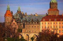 Как правильно сделать фотографию для визы в Польшу