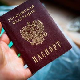 Как именно получить гражданство РФ без вида на жительство