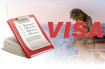 Документы на шенгенскую визу во Францию