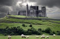 Как переехать жить в Ирландию?