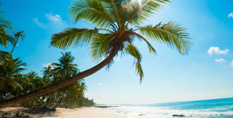 Отправляемся в круиз по Карибам (без визы)