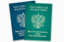 Как получить вид на жительство в России гражданину Таджикистана