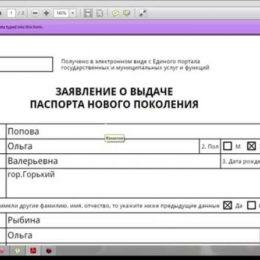 Заявление на заграничный паспорт нового образца